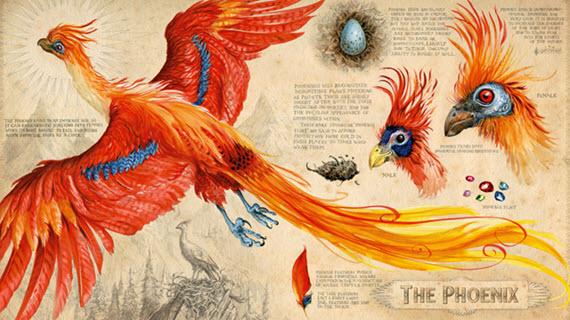 Phoenix drawn by Jim Kay in Harry Potter and the Chamber of Secrets Illustrated Edition
